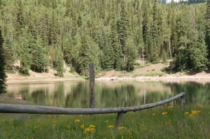 Blainey's Dam is a smaller lake on the property!